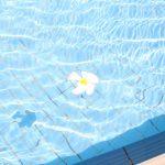 ジムのプールで初めて泳ぐときに必要なものと施設の使い方