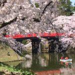 弘前公園の桜の見どころスポット 幻想的な花筏にかわいいハート型?